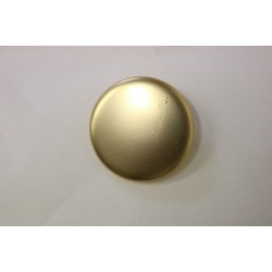 metallic button